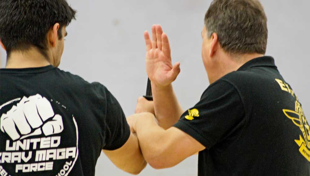 Private Krav Maga Training